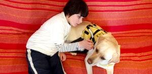 Terapijski_pas_i_epilepsija